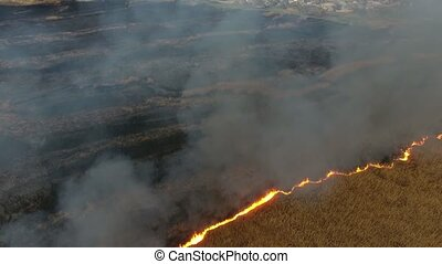 Aerial shot of sedge and cane wetland covered with flame and...
