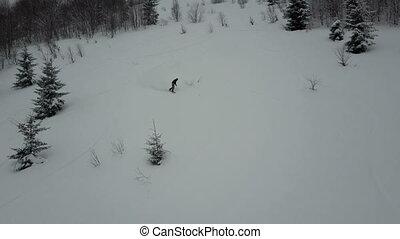 Aerial shot of Snowboarder descending among trees. Birds Eye...