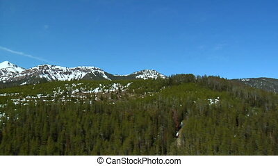 Aerial shot of snowy mountains and pine forests, Spring time