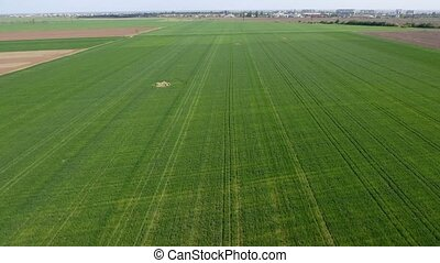 Aerial shot of the agricultural wheat fields in Eastern...