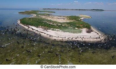 Aerial shot of the Black Sea shoal at Dzharylhach island...