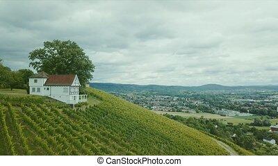 aerial shot of vineyard Holzberg in Germany
