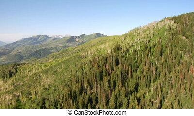 aerial skød, i, grønnes skov, og, bjerge, og, eng