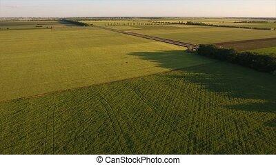 aerial survey over the beautiful Ukrainian fields