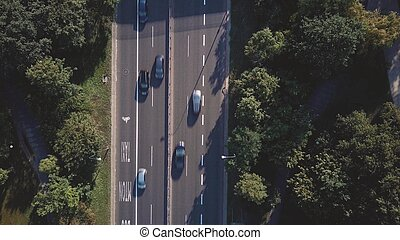 Aerial top down view of a car road within park - Aerial top...