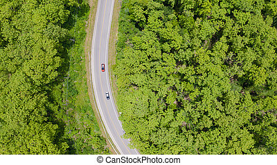 Aerial top view car driving through the forest on country road, view from drone