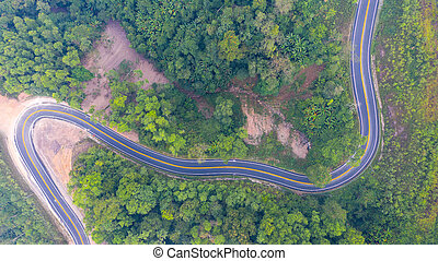 Aerial top view of a road in the forest