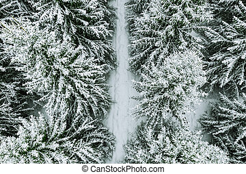 Aerial top view of snow covered forest with winter road.