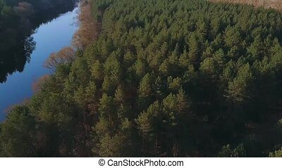 Aerial video of spring nature: a forest and a river. Top...