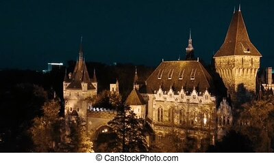 Aerial Video of the Vajdahunyad Castle at Night in Budapest