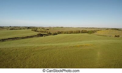 Aerial. Video shooting drone sky, lawns and pastures for agriculture in Alentejo, Portugal.