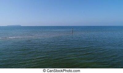 aerial view, advance, blue sea with sea gull - aerial drone...