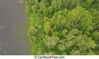 Aerial view along beautiful lake shore in Alberta, Canada -...