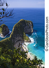 Kelingking beach on the island of Nusa Penida in Indonesia