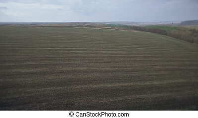 Aerial view autumnal field