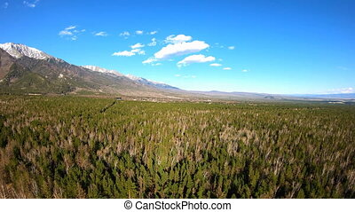 Aerial View. Camera moves forward over the forest. Mountain...