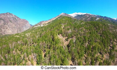 Aerial View. Camera moves rising up from forest. Mountain...