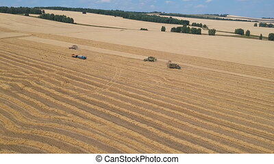 Aerial view Combine harvester gathers wheat on a large field...