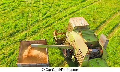 AERIAL VIEW. Combine Harvester Loading Wheat In The Truck At The Time Of Harvest
