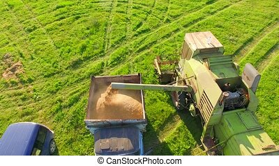 AERIAL VIEW. Combine Harvester Unloading Wheat Grain Into The Tractor Trailer.