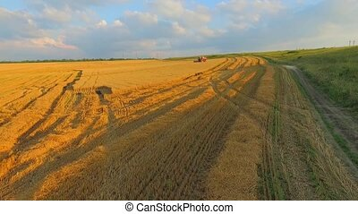 AERIAL VIEW.  Combine Harvester Working in the Fields