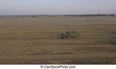 Aerial view combine harvesting a field of wheat. - Combine...