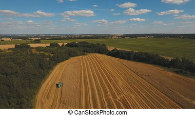 Aerial view combine harvesting a field of wheat.