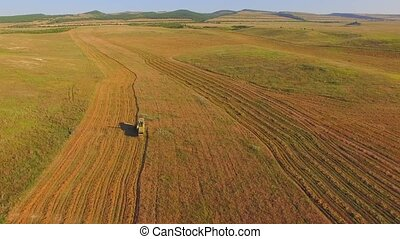 AERIAL VIEW. Combine On Harvest Fields