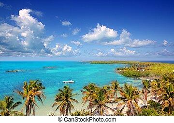 aerial view Contoy tropical caribbean island Mexico palm...