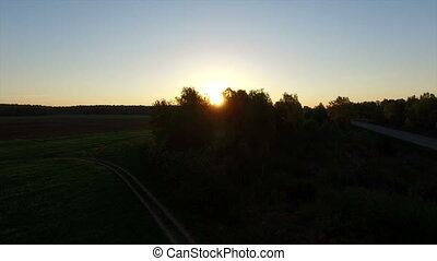 Aerial view - Dawn in the field