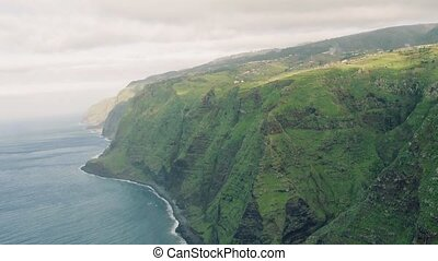 Aerial View Evergreen High Cliff Coastline