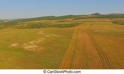 AERIAL VIEW. Farm Machine Working On A Wheat Field Against...