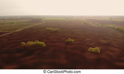 Aerial view farm with plow preparing land for sowing. Harrows prepares the agricultural land for planting crop in sunset light. Agriculture industry, cultivation of land