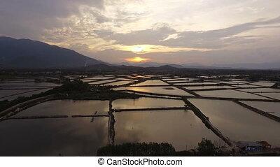 Aerial View fields at sunset in Vietnam