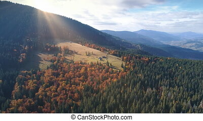Aerial View Flight over beautiful autumn mountains