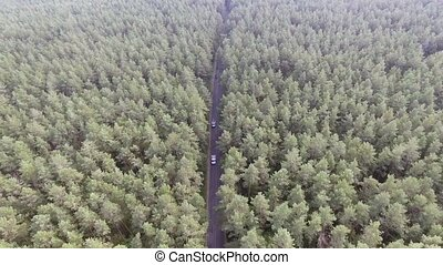 Aerial view flying over old patched two lane forest road...