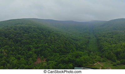 Aerial View. Flying over the beautiful mountain and beautiful forest. Landscape panorama.
