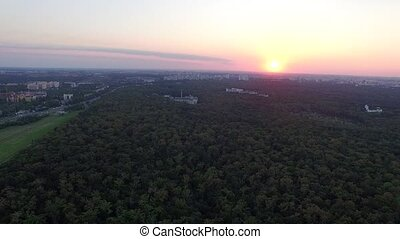 Aerial View. Flying over the beautiful sunny forest trees. Landscape panorama.
