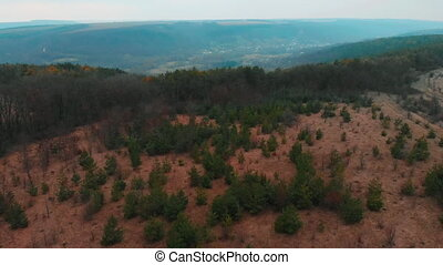 Aerial View from drone of forest with green trees. Shot over the north european wood. Small settlement village in the ravine. Cinematic tonned