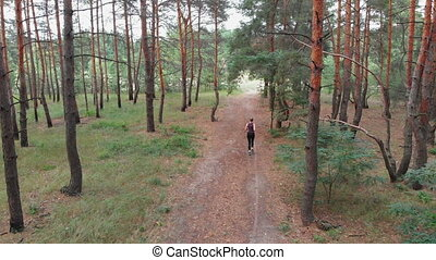 Aerial view from the Back to the Young Woman who Runs through Pine Tee Forest Path