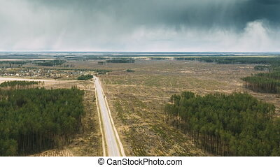 Aerial View Green Pine Forest Deforestation Area Landscape. ...