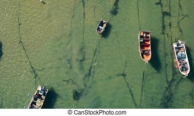 Aerial View Moored Fishing Boats in Harbor