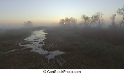 Aerial View: Morning Fog. Flying over the River. Forest...