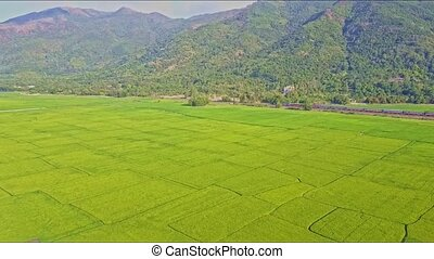 Aerial View Moving Over Rice Field to Train by Mountains -...
