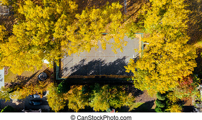 Aerial view of a basketball court, basketball court in autumn