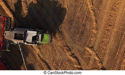 Aerial view of a combine harvester unloading grain into a...