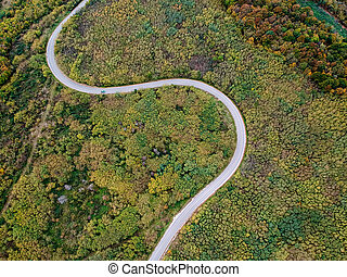 Aerial view of a curly road