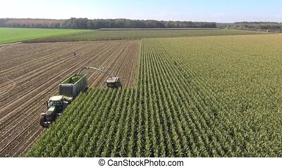 Aerial view of a farmer harvesting
