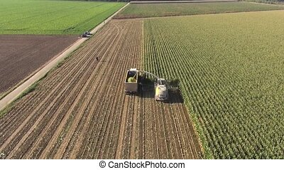 Aerial view of a farmer harvesting
