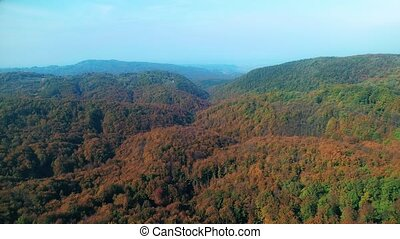 Aerial view of a forest treetops in autumn - Aerial view of...
